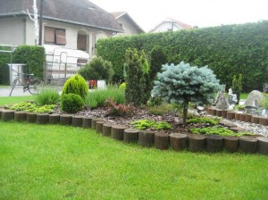 Nezamenljiva u Japanskom vrtu