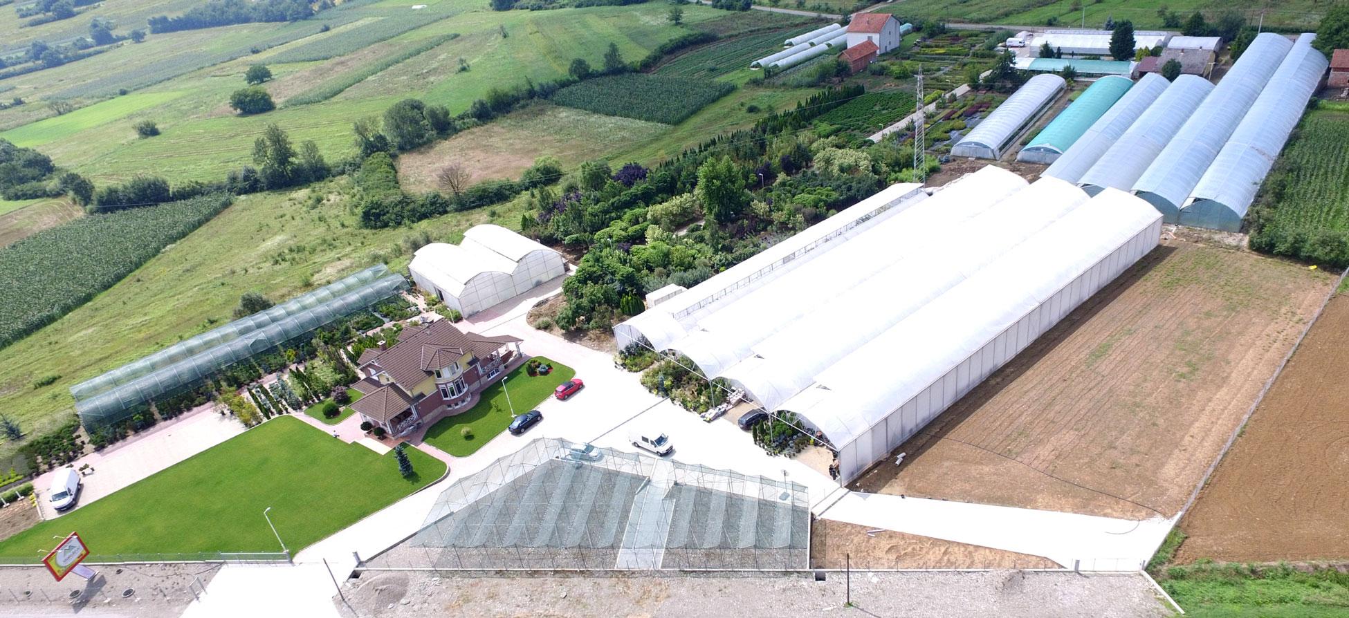 Rasadnik Manjlovic snima iz vazduha dronom.